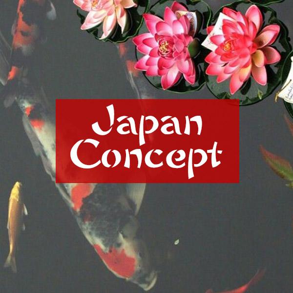tshirt stile giapponese japan concept donna